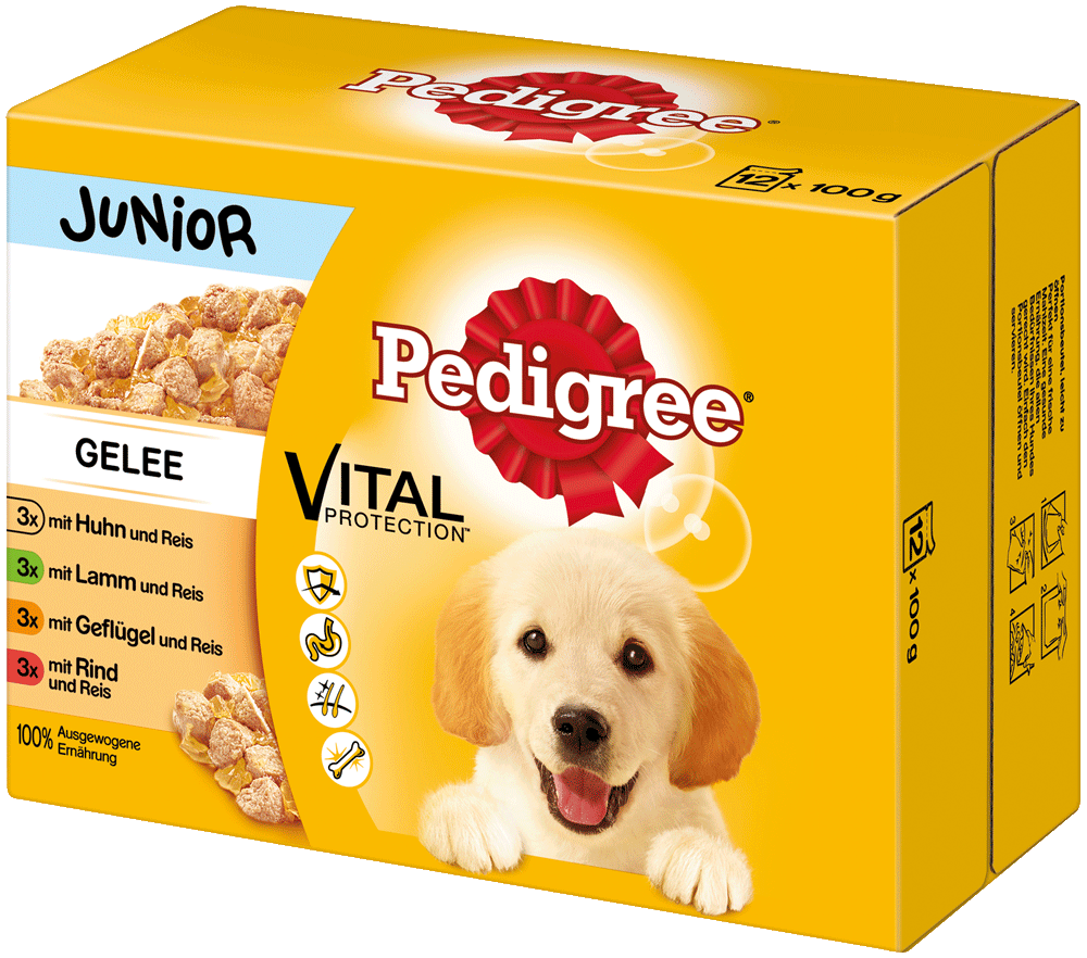 PEDIGREE Portionsbeutel Junior in Gelee Multipack 12x100g